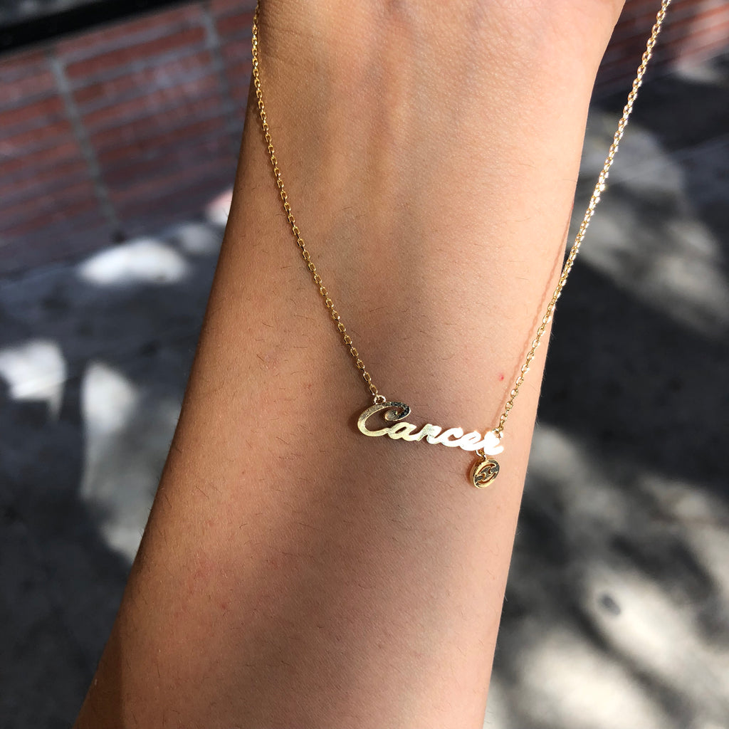 Zodiac Dainty Necklace