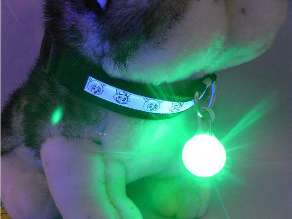 Pet Safety Light - LED