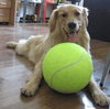 "Giant Tennis Ball Toy for Pets 9.5"" (24cm)"
