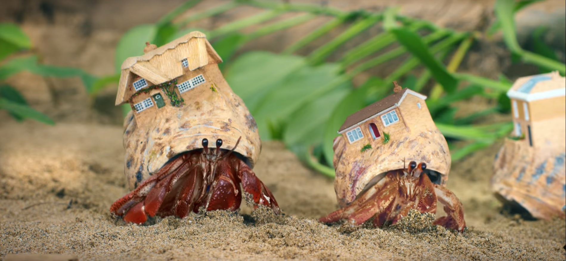 These Cute 3D Printed Hermit Crab Houses Are Irresistible