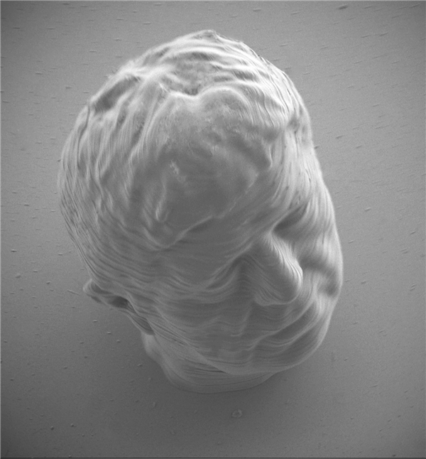 French Artist Unveils World's Tiniest 3D Printed Self-Portrait
