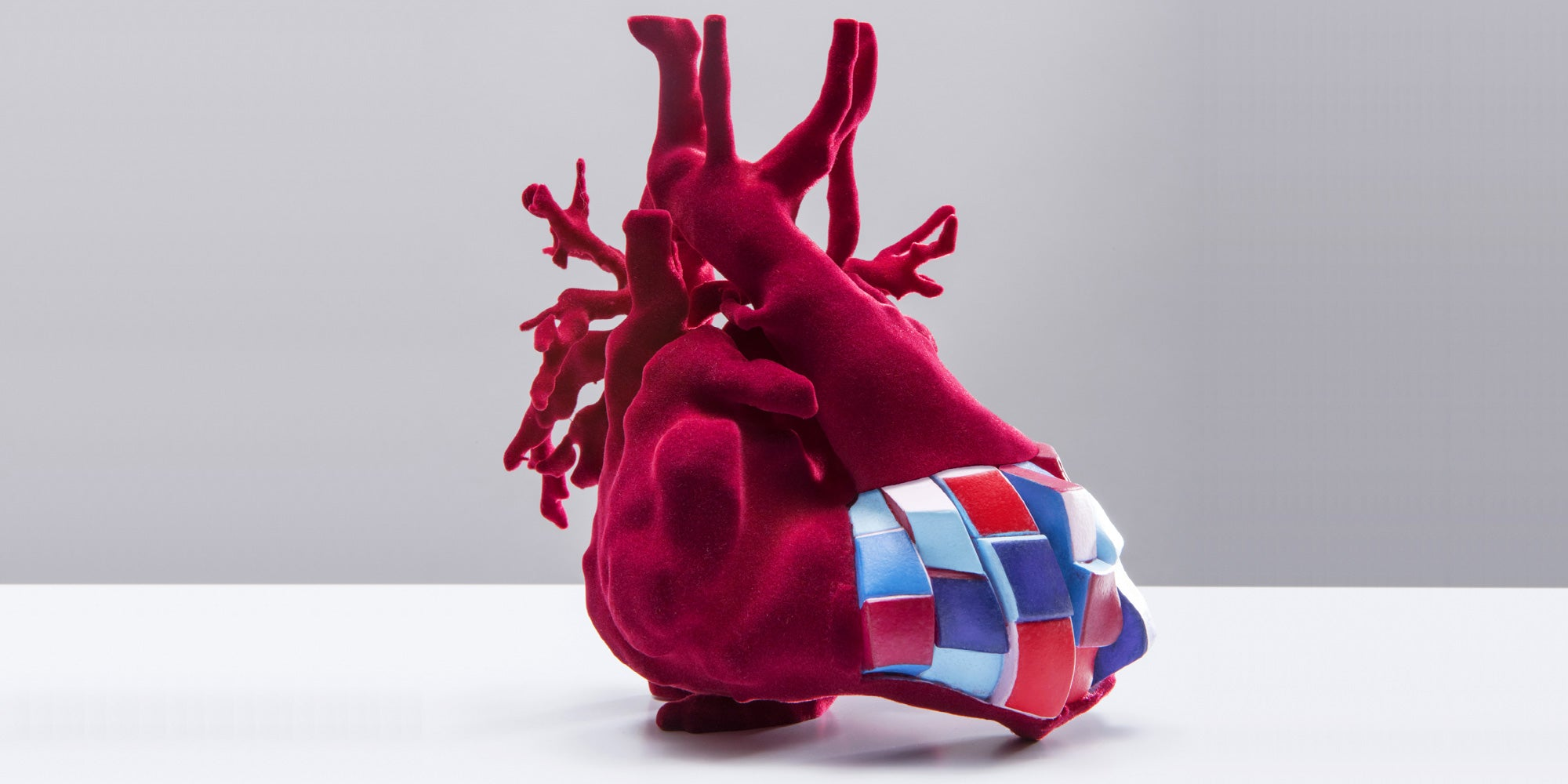 Exhibit Features 3D Printed Hearts and Stories Behind Them