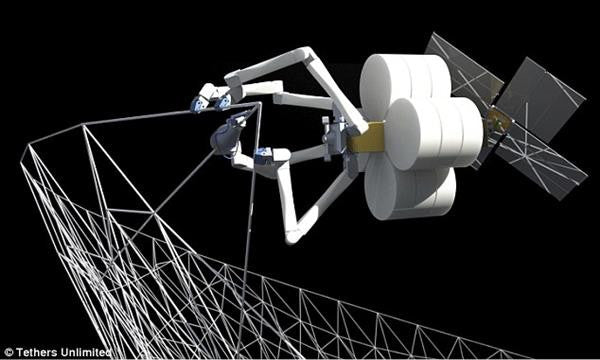 3D Printing Spiders Might Soon Print Satelites in Space