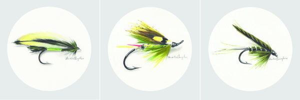 Green Fishing Flies Collection - Set of Three Prints