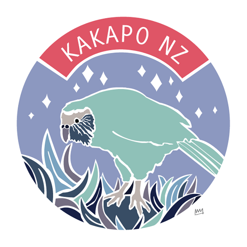 KAKAPO, NZ - WINTER PALETTE - Melissa Sharplin