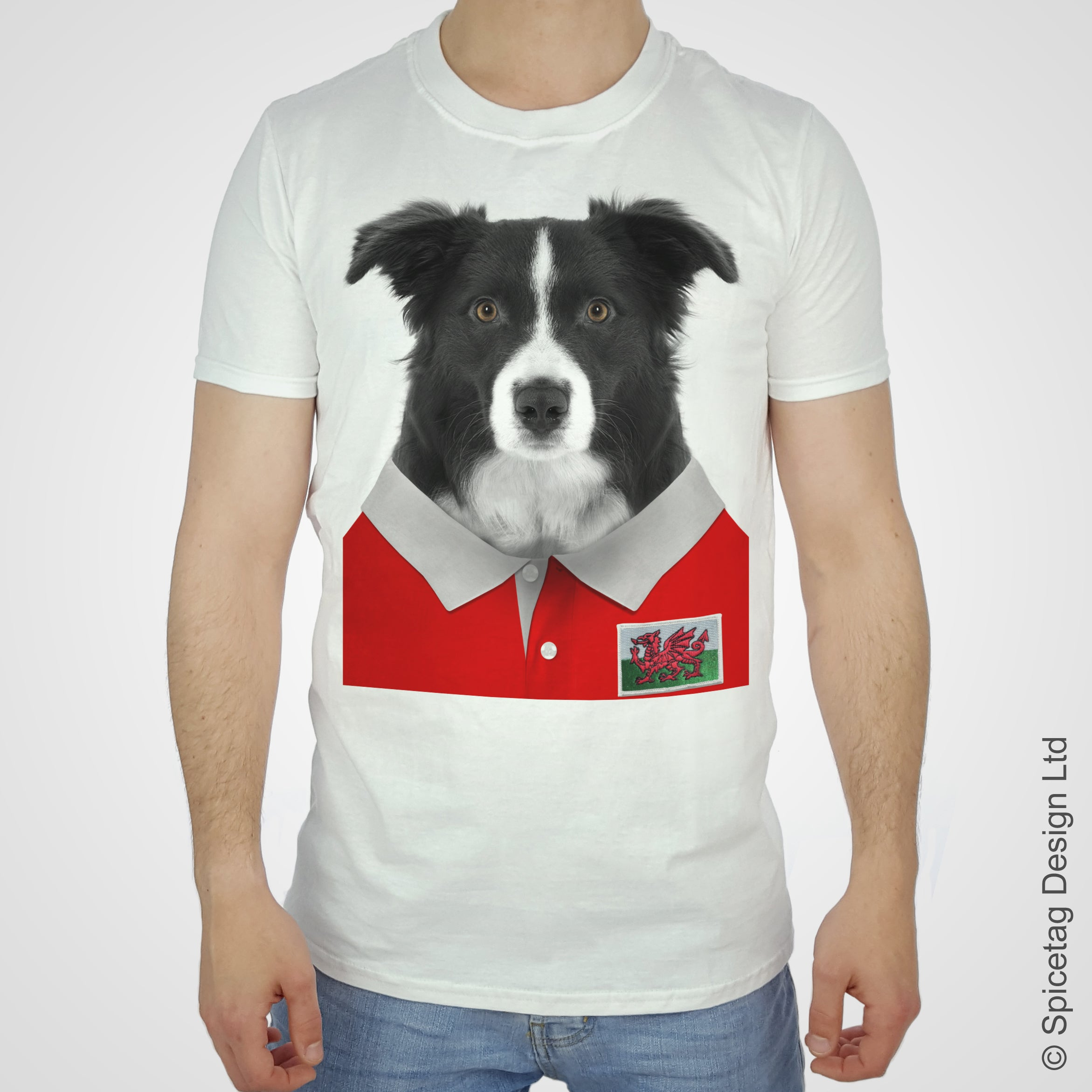 Wales Rugby Border Collie T-shirt