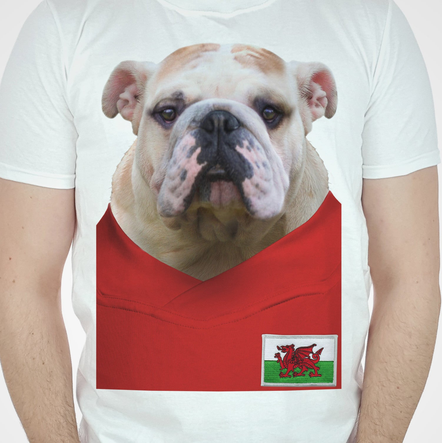 Wales Football Bulldog T-shirt