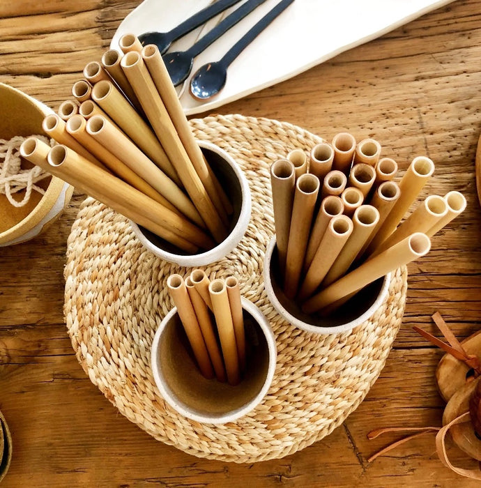 Organic Bamboo Straw Set (12pcs)