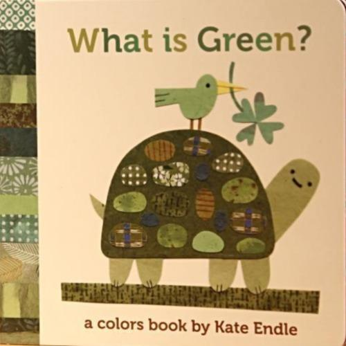 What is Green? Board Book