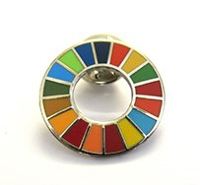 Global Goals Pin