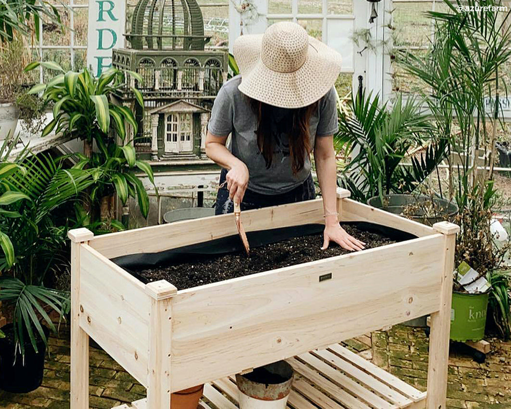 The Gift of Greenery: How Box Gardens Can Make your Mother's Day