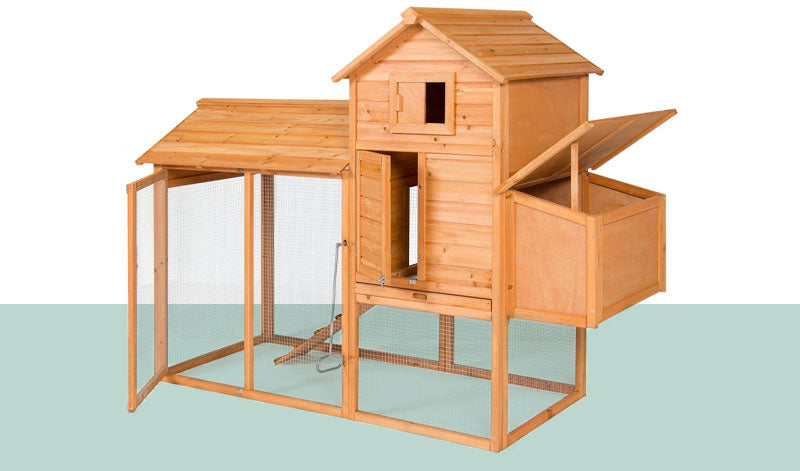 Chicken coop for homesteading