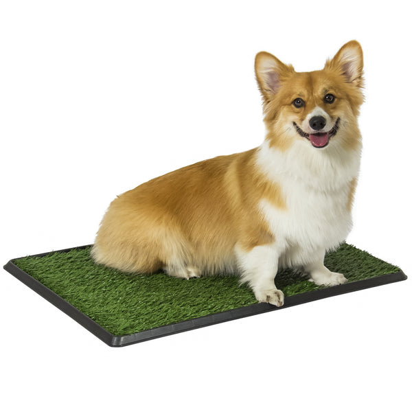 Indoor Outdoor Pet Potty Trainer - Green