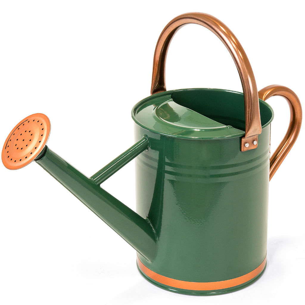 1-Gallon Galvanized Steel Watering Can w/ O-Ring, Top Handle