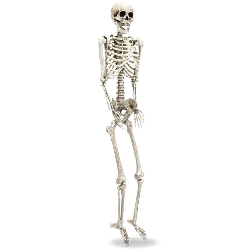 5FT Full Body Skeleton Halloween Decoration