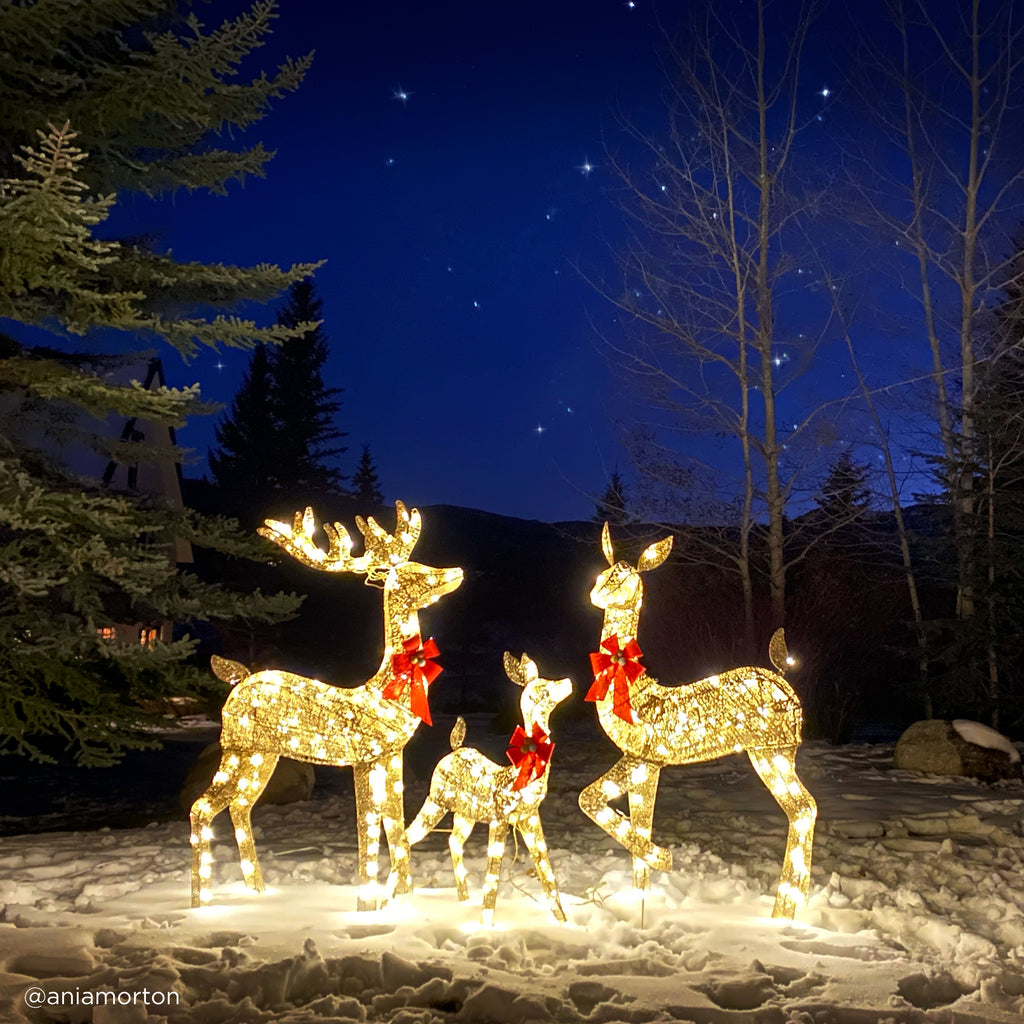 3-Piece Lighted Christmas Deer Set Outdoor Decor with LED Lights