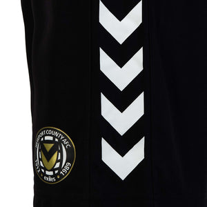 HUMMEL ADULT Training Shorts 2020-21