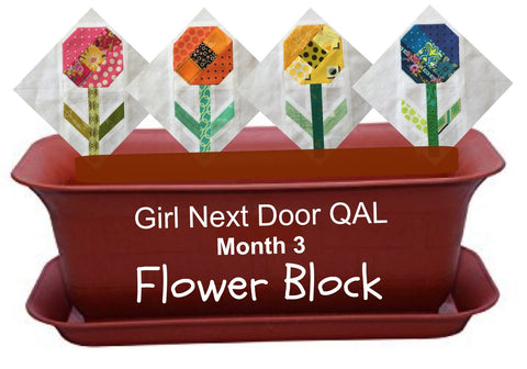 Gir Next Door QAL - Month 3 - Flower Block