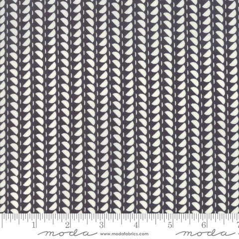 Fine and Sunny by Jen Kingwell for Moda Fabrics - Spidewinder Charcoal 18176 26