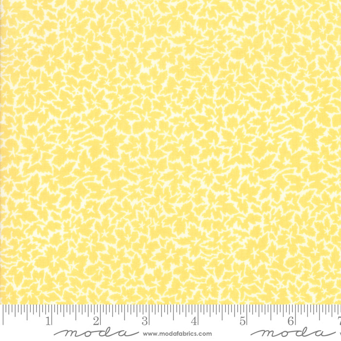 Fine and Sunny by Jen Kingwell for Moda Fabrics - Ivy Mango Cream 18174 19
