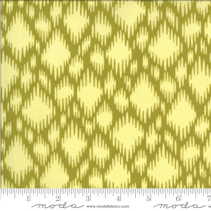 Winkipop by Jen Kingwell for Moda Fabrics - 18194 20 Undercurrent in Kelp