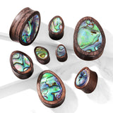 Abalone Inlaid Tear Drop Organic Sono Wood Saddle Plugs- Sold in pairs