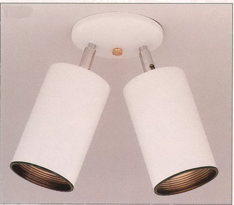 Designers Fountain Lighting 1042-06 Two Light Flush Ceiling Mount in White Finish - Quality Discount Lighting