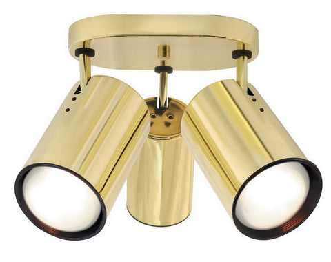 Nuvo Lighting 76-423 Three Light R30 Flat Cylinder Adjustable Head Flush Ceiling Mount in Polished Brass Finish - Quality Discount Lighting