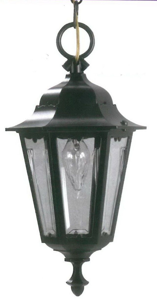 Rainbow ADJ APX-C57HC-BK One Light Exterior Outdoor Hanging Lantern in Black Finish