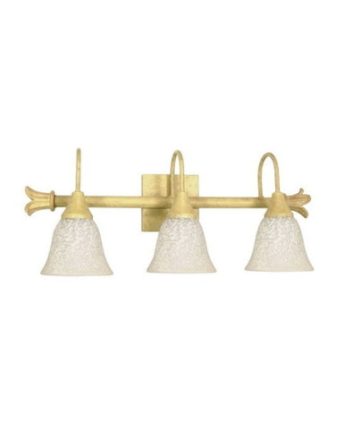 Nuvo Lighting 60-124 Tropica Collection 3 Light Bath Vanity Wall Mount in Aged Beige Finish - Quality Discount Lighting