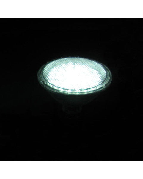 Razr RDL-730 Box of 12 WHITE LED PAR30 Bulbs
