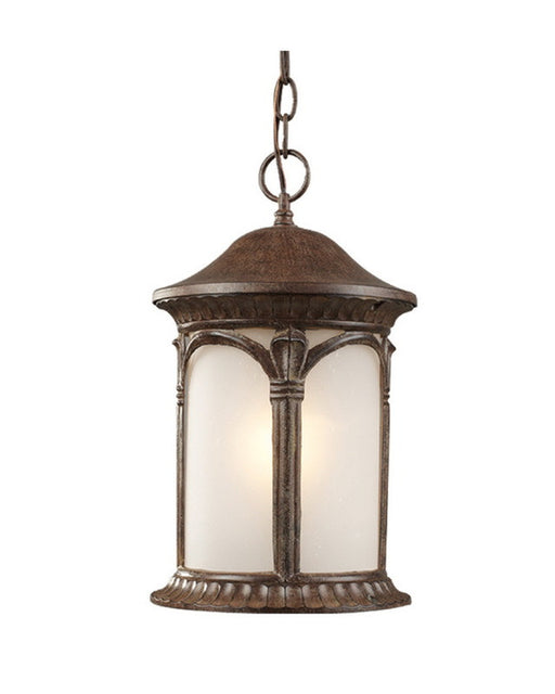 Z Lite Lighting 2021CH WB One Light Outdoor Exterior Hanging Mount In  Weathered Bronze