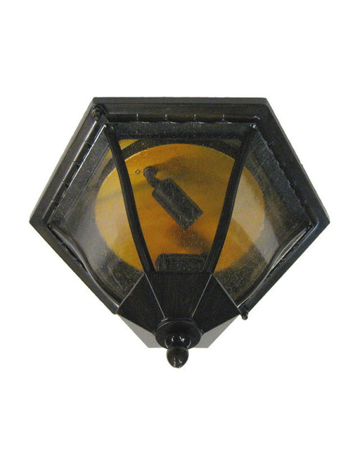 Epiphany Lighting 104896 ORB Two Light Outdoor Exterior Flush Ceiling Mount in Oil Rubbed Bronze Finish
