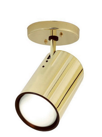Nuvo Lighting 76-419 One Light R30 Flat Cylinder Adjustable Head Flush Ceiling Mount in Polished Brass Finish - Quality Discount Lighting
