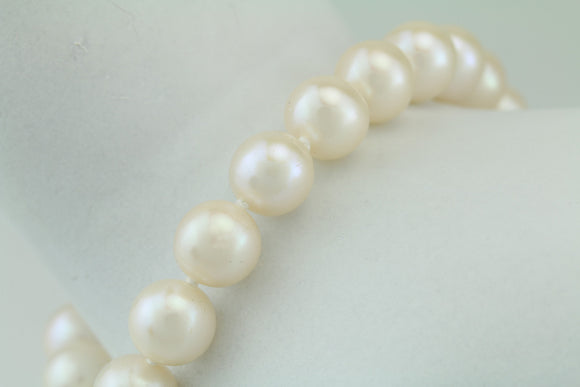 Freshwater Pearl Bracelet 14KT Yellow Gold.