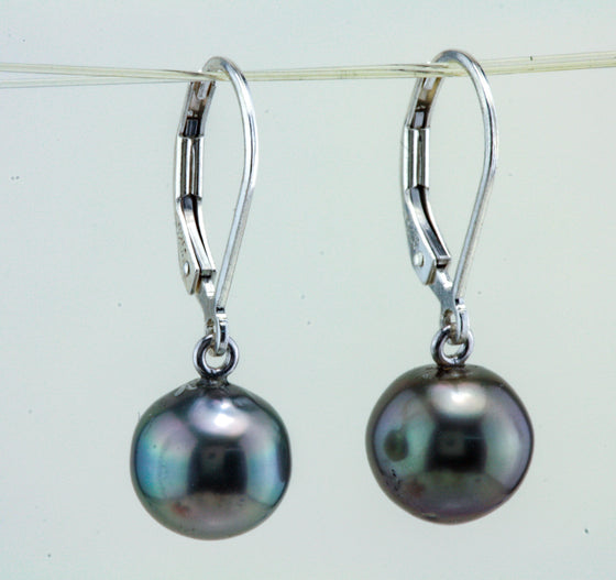 Cook Island South Sea Pearl Earring