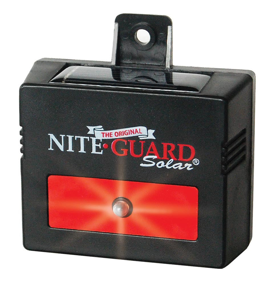 Nite Guard Solar lights