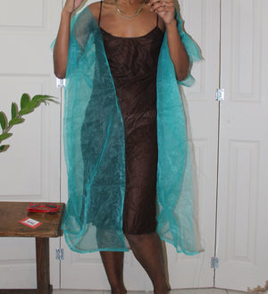 Raga Sheer Cape