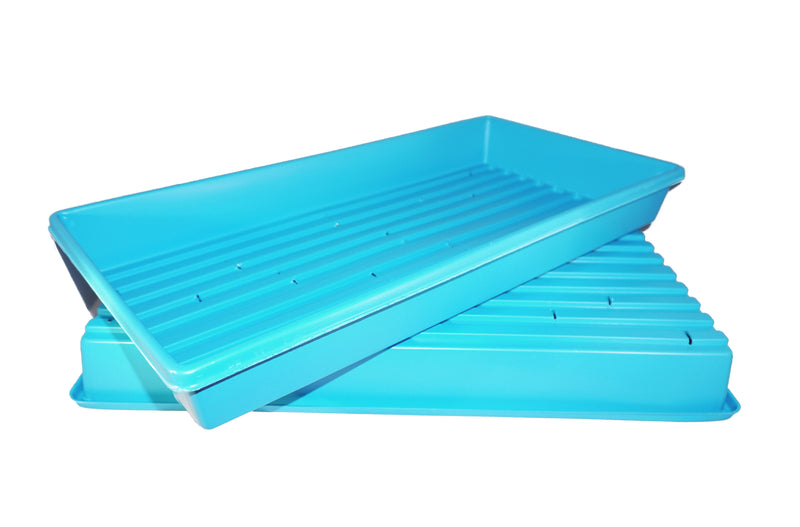 blue grow tray with holes