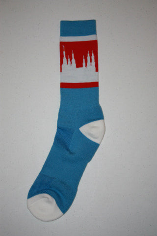 Washington DC Temple Socks - Blue