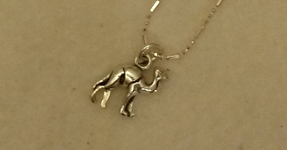 Silver Camel Hump Day Necklace