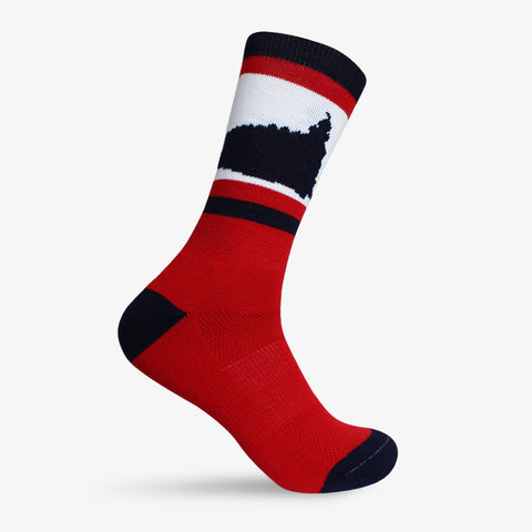 St. George Temple Socks