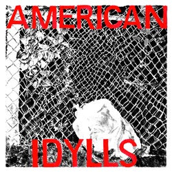 "Various Artists ""American Idylls"" 2xLP"