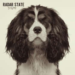 "Radar State ""Strays"" LP"