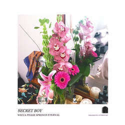 "Wicca Phase Springs Eternal ""Secret Boy"" LP"