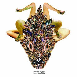 "Diploid ""Is God Up There?"" LP"