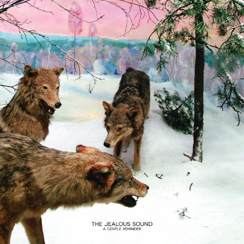 "The Jealous Sound ""A Gentle Reminder"" LP"