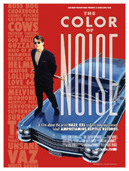 The Color Of Noise DVD
