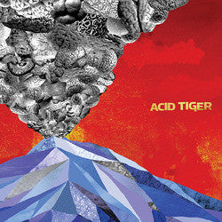 "Acid Tiger ""<i>self titled</i>"" CD"