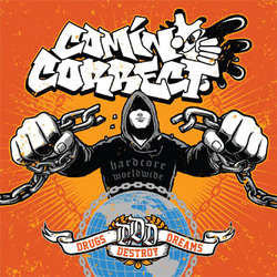 "Comin' Correct ""Drugs Destroy Dreams"" LP"